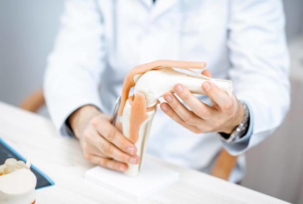 anatomia i funkcja stawu rzepkowo udowego